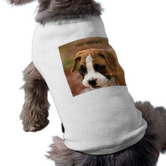 Le boxarehund tröja