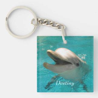 Le delfinen