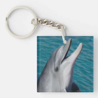 Le delfinen Keychain