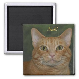 Le kattunge magnet