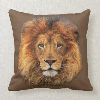 Lejon afrikan kudde