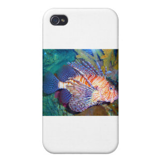 Lejon eller Turkiet fisk iPhone 4 Fodraler
