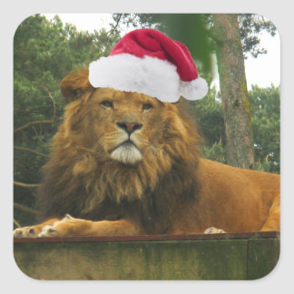 Lejon ha på sig Santa för jul hatt Fyrkantigt Klistermärke