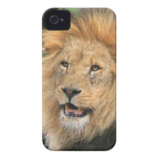 Lejon head male härlig kompis för fodral för Case-Mate iPhone 4 fodral