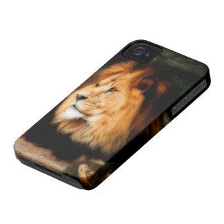 Lejon iPhone 4 täcker (HD) Case-Mate iPhone 4 Fodraler