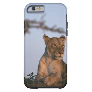 Lejona 4 tough iPhone 6 skal