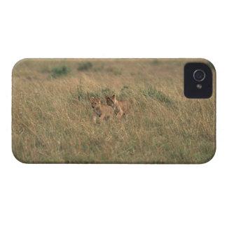 Lejona 9 iPhone 4 skydd