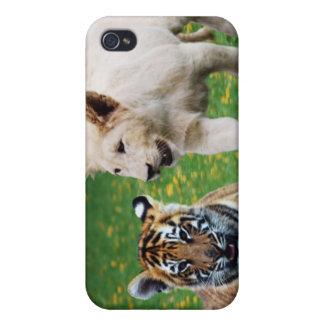 Lejona & tigerungar på lek iPhone 4 cases