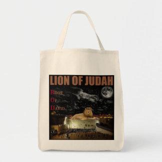 Lejont av Judah på den westerna väggen Tygkasse