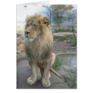 Lejont söker efter lunch hälsningskort