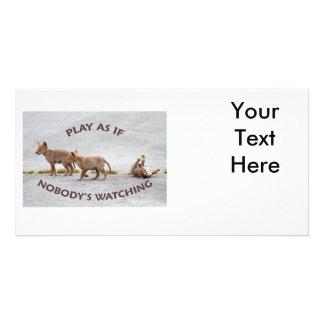 Leka för babyprärievargar skräddarsydda fotokort