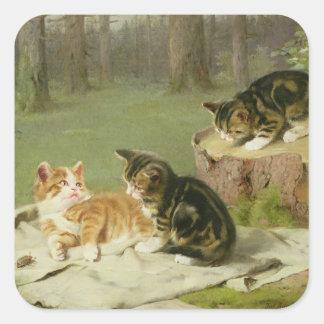 Leka för kattungar fyrkantigt klistermärke