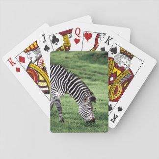 Leka kort med bekläda avbildar av att beta för spel kort