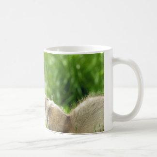 Leka vesslamuggen kaffemugg