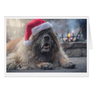 Leonberger Santa Hälsningskort