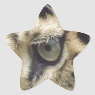 Leopardansikte Stjärnformat Klistermärke