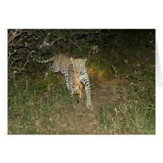 Leoparden flyr lejon med henne dödan hälsningskort