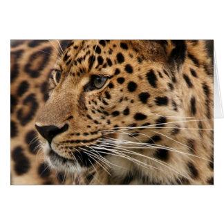Leoparden Hälsningskort