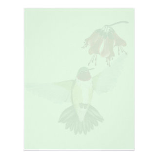 Letterhead_vertical röd Throated Hummingbird2 Brevhuvud