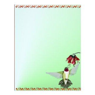 Letterhead_vertical röd Throated Hummingbird Brevhuvud