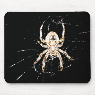 Lika spindlar? musmattor