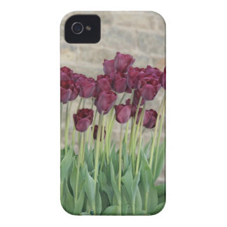 lila blommor iPhone 4 Case-Mate case