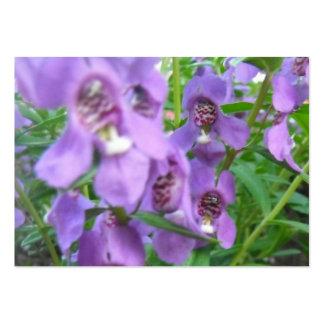 Lila blommor set av breda visitkort
