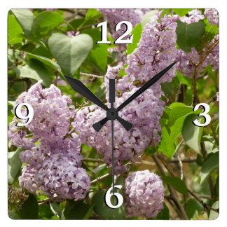 Lila Bush härlig purpurfärgad vår blommor Fyrkantig Klocka