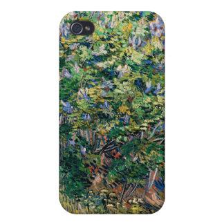Lila Bush - lilor, Vincent Van Gogh iPhone 4 Hud