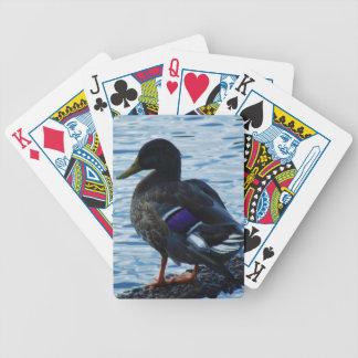Lilaanka som leker kort spelkort