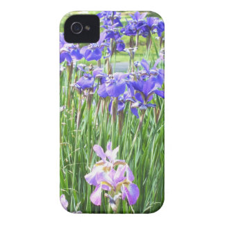 Lilan Irises fodral för iPhone 4 Case-Mate iPhone 4 Skal