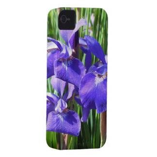 Lilan Irises fodral iPhone4 iPhone 4 Skydd