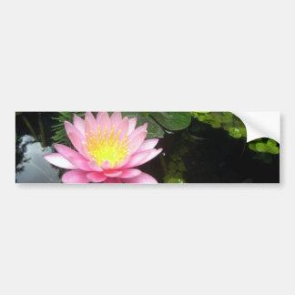 Liljan och guldfisken bildekal