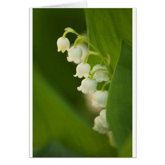 Liljekonvaljblomma Hälsningskort