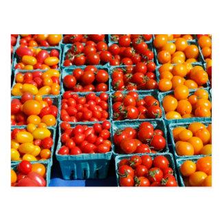 Lilla röda och orange tomater vykort