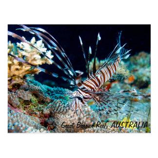 Lionfish på den underbara barriärrevvykortet vykort