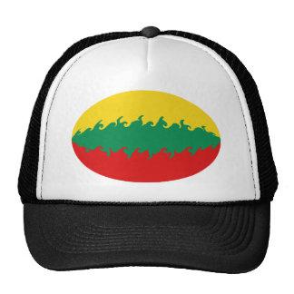 Litauen Gnarly flaggahatt Keps