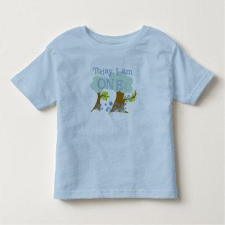 Lite 1st födelsedagTshirts och gåvor för Tee
