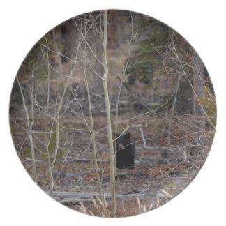 Lite björn i stor skog fest tallrikar