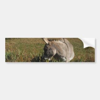 Lite grå åsna med vildblommar bildekal