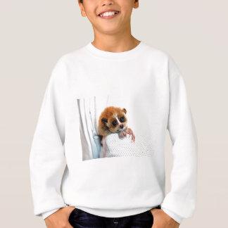 Lite grabb tröja
