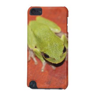 Lite grön trädgrodaipod touch case