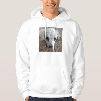 Lite hund för vittekopppudel hoodie