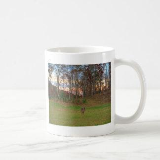 Lite solnedgång för hjort&arosor kaffe muggar