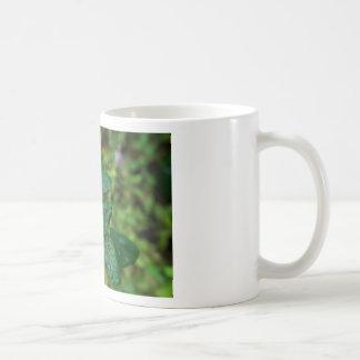 Lite steg hösten med blur kaffemugg