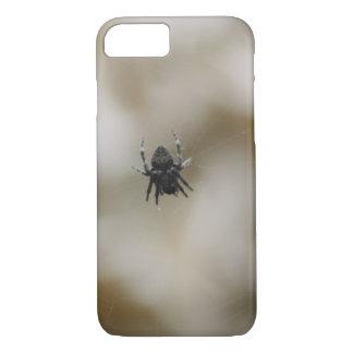 Lite svart spindelsitta på en webben