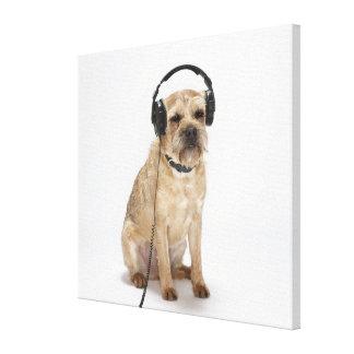 Liten hund som ha på sig hörlurar canvastryck
