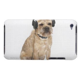 Liten hund som ha på sig hörlurar iPod touch skal