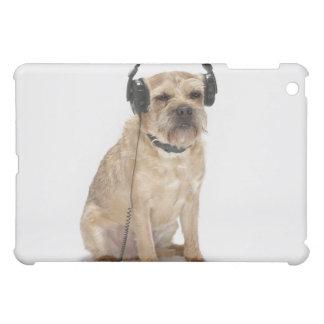 Liten hund som ha på sig huvud iPad mini skal