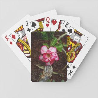 Liten rosablomma spelkort